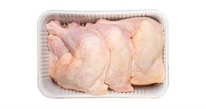 الصورة: الدجاج